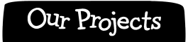 Our Projects Header